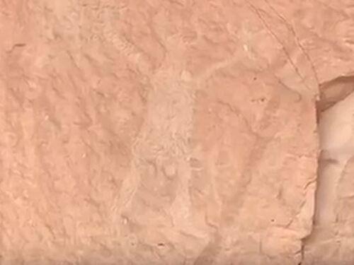 Le mystère de Huachipa - Pérou