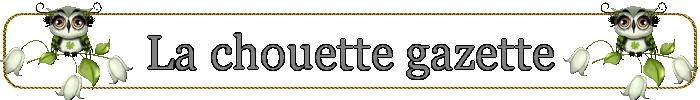 La gazette image
