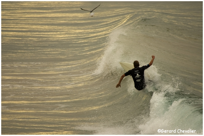 Surf 2 (Portugal)