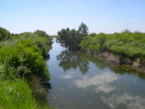 Le chemin de Littoral Domaine de Certes et Graveyron