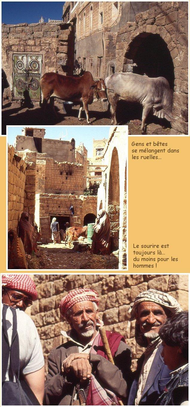 YEMEN 13 - La visite d'Amran