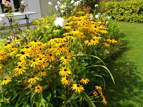 du soleil au jardin