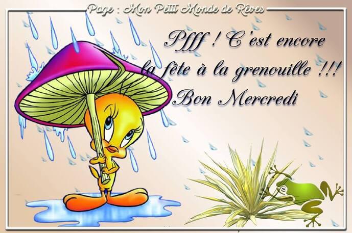 """Résultat de recherche d'images pour """"bon mercredi sous la pluie"""""""