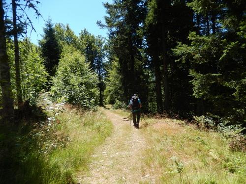 Les Crêtes des Vosges 4 de Thann à Belfort GR5 - juillet 2015