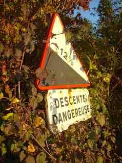 Autour du grand chêne blanc du Péage / commune d'Auriples-La Répara : descente vertigineuse sur fond de cornouillers sanguins,  le 1er novembre 2015 ;