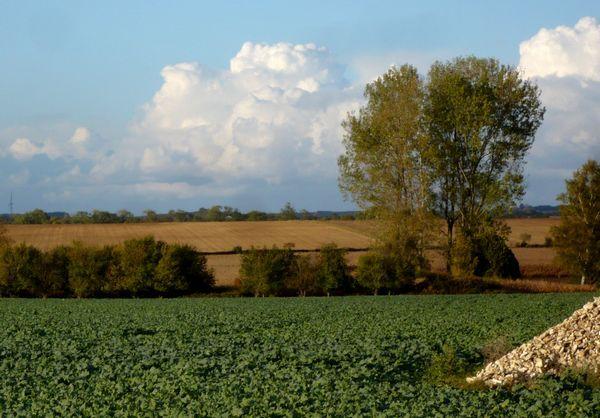 nuages-02.jpg
