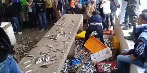 Tétouan: attaque contre des poissonniers, la gendarmerie intervient