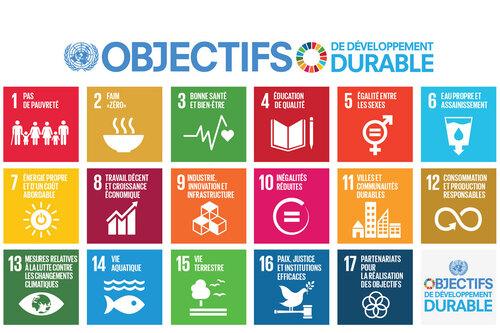 Pour un monde durable et plus juste, une belle leçon en vidéo!