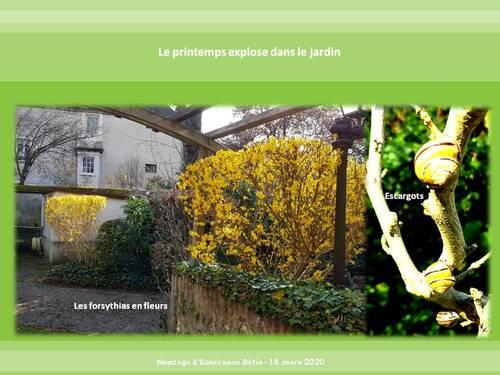 Confinement et jardin