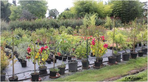 La pépinière écolo Le Jardin du Prahor