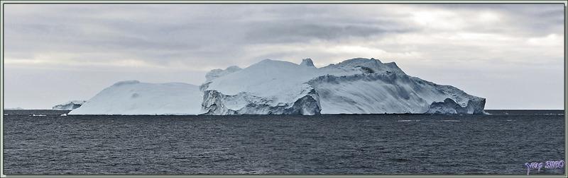 Dans la lumière blafarde du petit matin, au large, toujours des icebergs - Kullorsuaq - Upernavik - Groenland