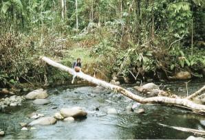 A-Chantal-en-Amazonie.jpg