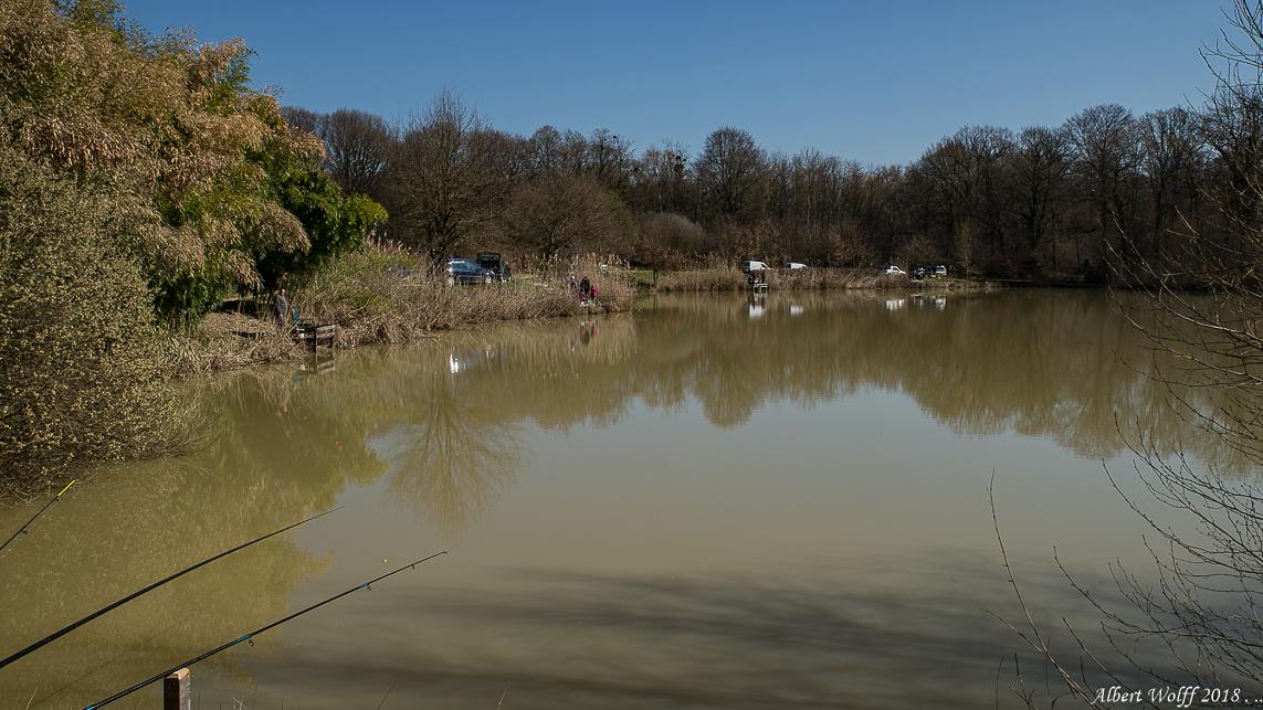 L'eau du Jura - Les étangs - 1