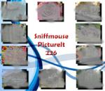 PictureIt 226 - Sniffmouse