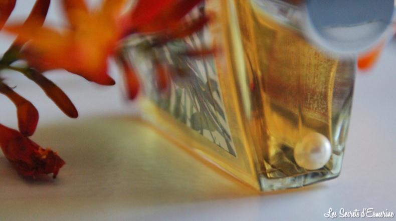Mon avis sur l'Élixir d'huiles sèches de l'Institut Arnaud