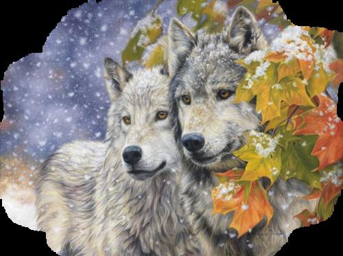 LA LÉGENDE DU QUESNE AU LEU (le chêne au loup)C (NORD)