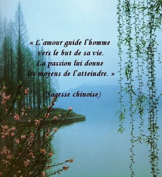 Citations en images : L'amour   Le monde de la philo et de la poésie