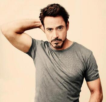 Robert downey jr BOX OFFICE