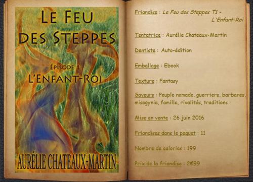 Le Feu des Steppes T1 - L'Enfant-Roi - Aurélie Chateaux-Martin