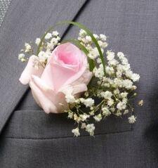 Journées des Plantes de Chantilly 2017 : Gagnez vos entrées pour l'édition de printemps...