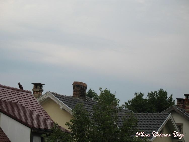 Ciel d'Alsace 173