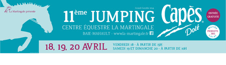 Affiches Jumping Inter Caraïbe