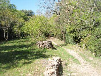 Un des chemins d'accès à l'ermitage