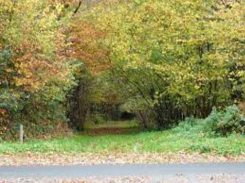 La valléé du Perrier (Kermoroc'h)