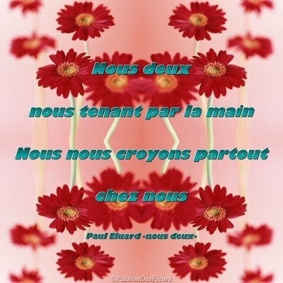 carte poeme amour012
