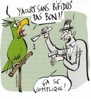 Certes les perroquets parlent.