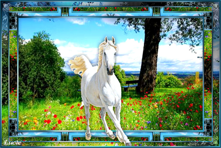 Horse 190601022811975969