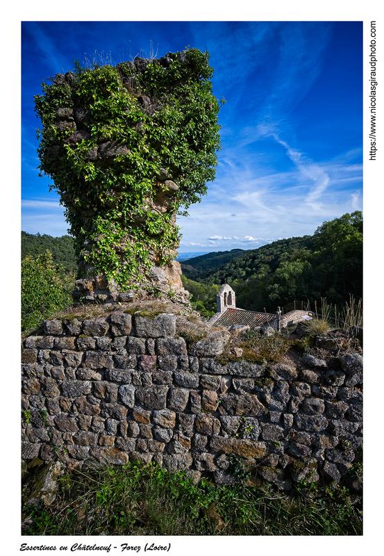 Château de la Roche et Roche en Forez (AURA)