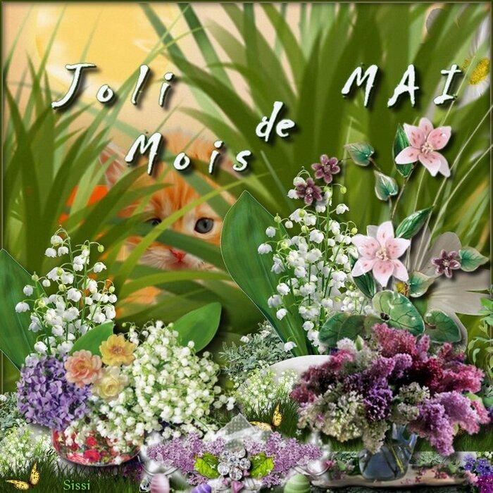 * Joli Mois de Mai  à Tous *