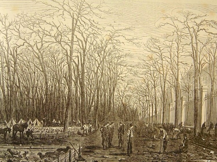 Le jardin du Luxembourg pendant le siège de Paris (L'Illustration européenne. 1870. n° 40, page 345)