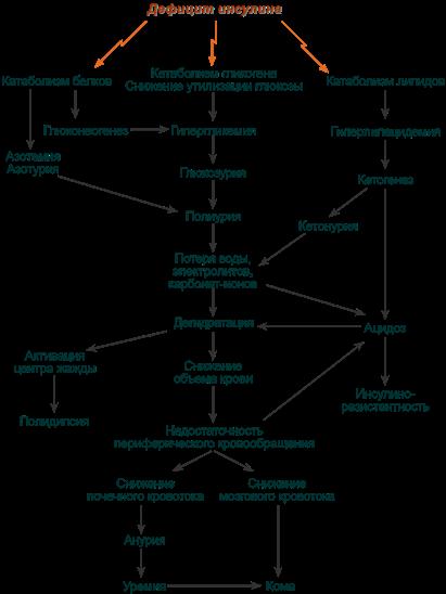 Биохимия для диабетиков