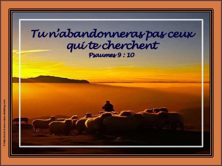 Tu n'abandonneras pas ceux qui te cherchent - Psaumes 9 : 10