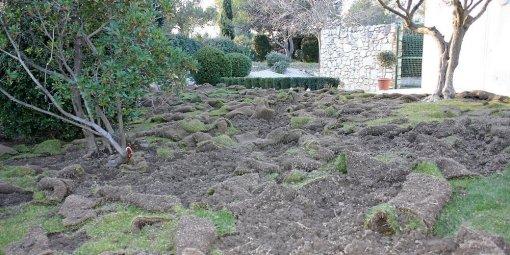 """Résultat de recherche d'images pour """"jardin dévasté"""""""