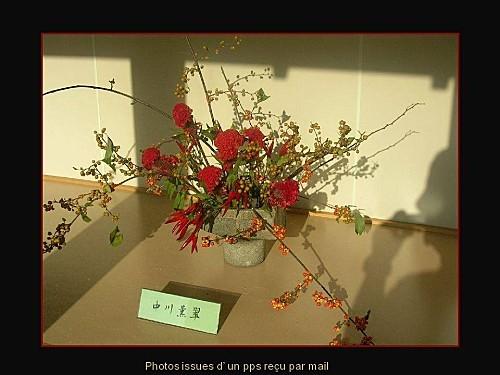 ikebana pps (5)