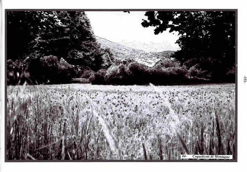 """Composition Poêtique"""" Silence"""""""
