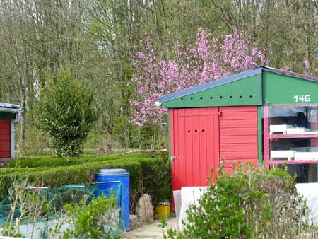 Les jardins familiaux de la ville de Rennes
