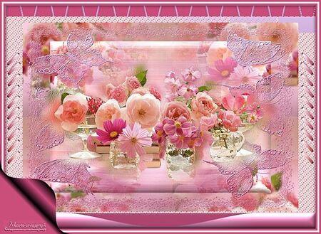 Pink plus More