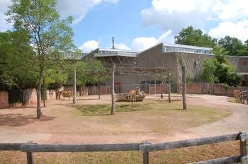 Zoo Saarbrücken 2012 130