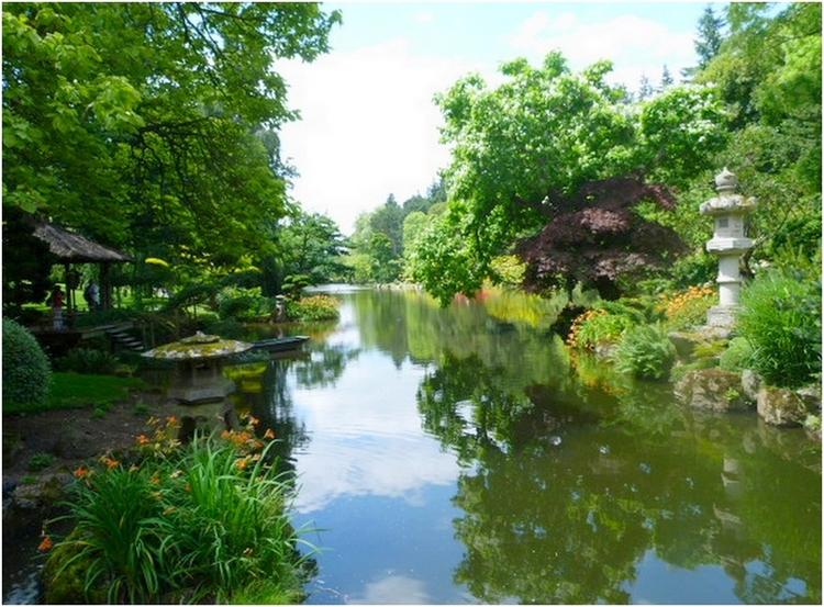 Le jardin Oriental de Maulevrier