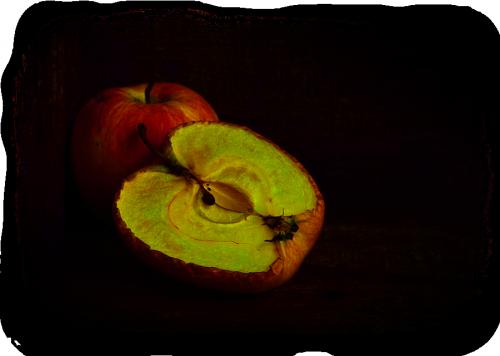 tube pommes