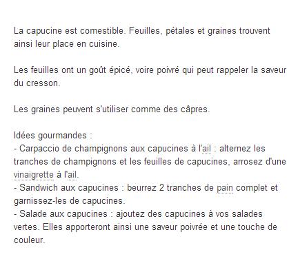 "*MERVEILLES des JARDINS.: "" Les CAPUCINES*"