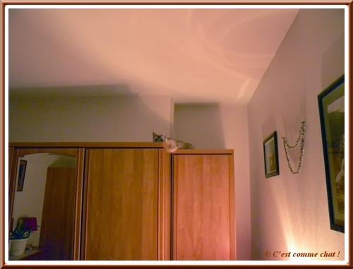 Sur l'armoire