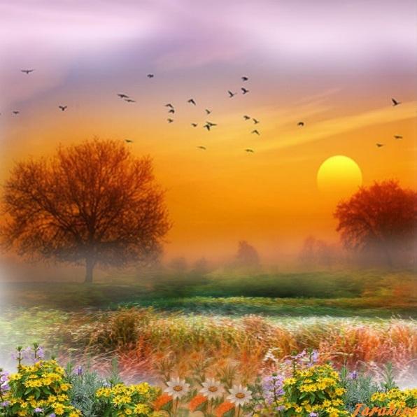 coucher de soleil printanier
