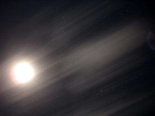 «La Nuit quand la Vie s'erre»