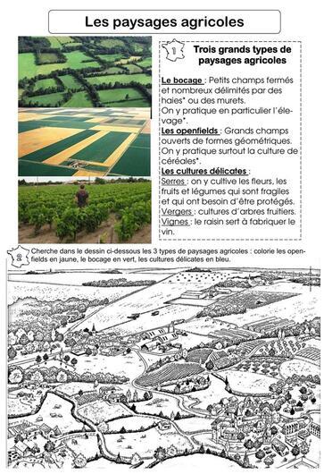 Paysages agricoles