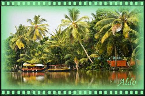 PPS Backwaters du Kerala